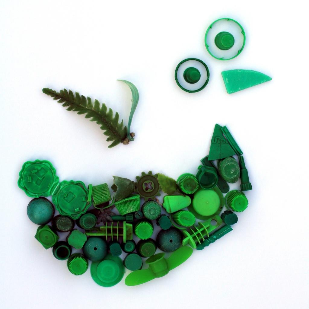 oiseau_vert