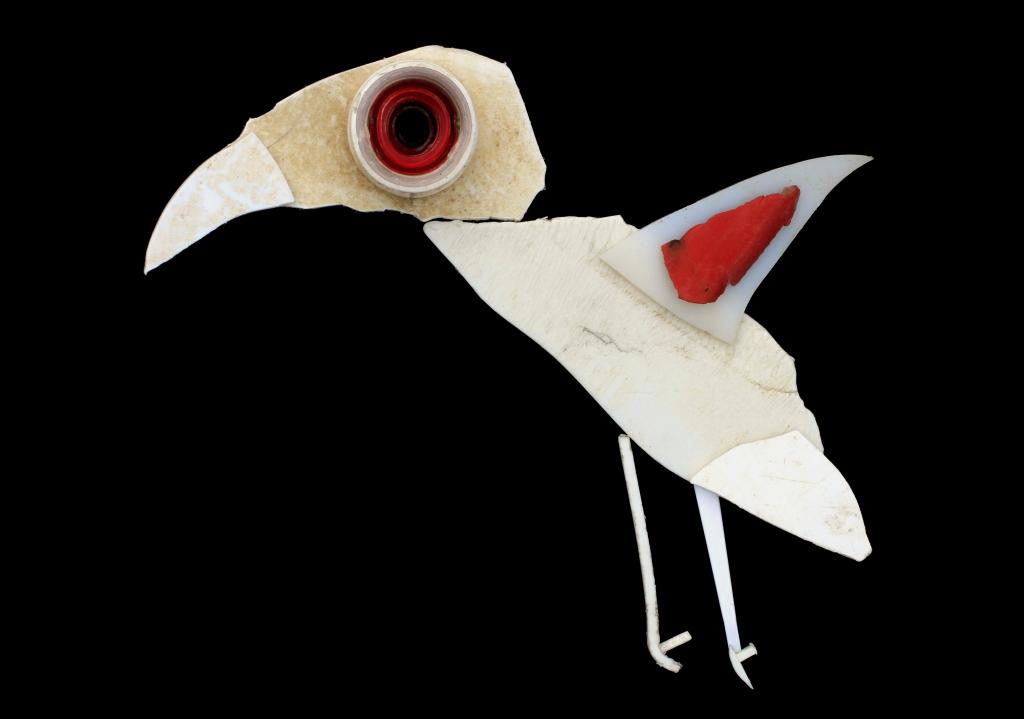 oiseau-blanc